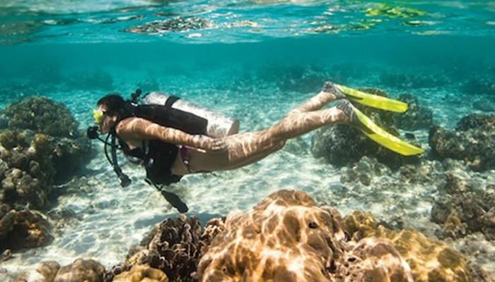 Gps for divers underwater related keywords gps for - Raja laut dive resort ...